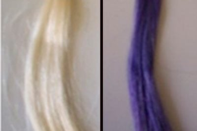 A hair dye derived from blackcurrant skins can transform bleached hair (left) into a multitude of shades including purple (right). Source: American Chemical Society