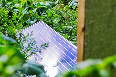 A solar panel provides electricity to drive a pump that supports a drip irrigation system.