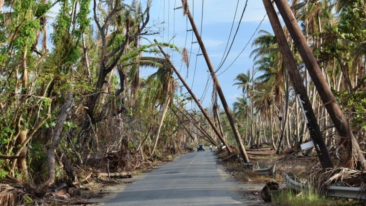 Report urges focus on supply chain recovery after a disaster