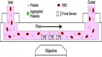 Video: Microfluidic device measures platelet health in minutes