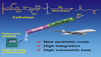 High-density aviation fuel produced from plant wastes