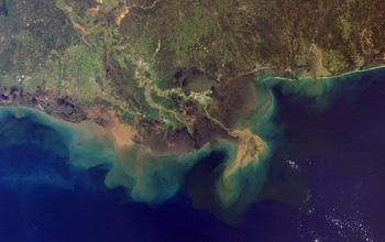 Mississippi River Delta. Source: Wikipedia