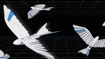 Fleet of robotic birds developed by German company