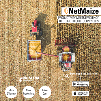 The NetMaize mobile app combines grower knowledge and forecast data to deliver customized irrigation scheduling designed to boost corn yields. (Source: Netafim USA)