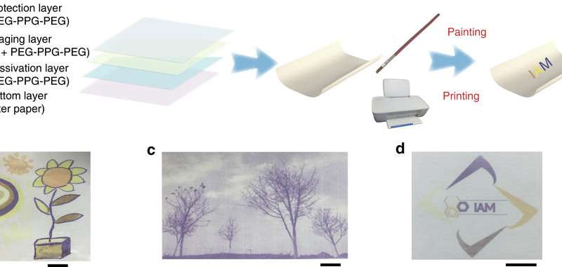 Structure and multicolour printing of rewritable paper. a Schematic illustrations of four-layer structure used to create the rewritable paper based on L 1 . b Colourful image of a flower drawn by different metal salts aqueous solution as ink. Scale bar = 1 cm. c An image of trees printed using a customized black inkjet cartridge filled with FeCl2 aqueous solution. Scale bar = 1 cm. d Colourful printing of the badge of Institute of Advanced Materials using an inkjet cartridge filled with FeCl2, Zn(NO3)2 and Co(NO3)2, respectively. Scale bar = 1 cm. Source: Nature Communications (2017). DOI: 10.1038/s41467-017-02452-w