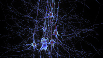 Revealing the brain's mysteries, one neuron at a time