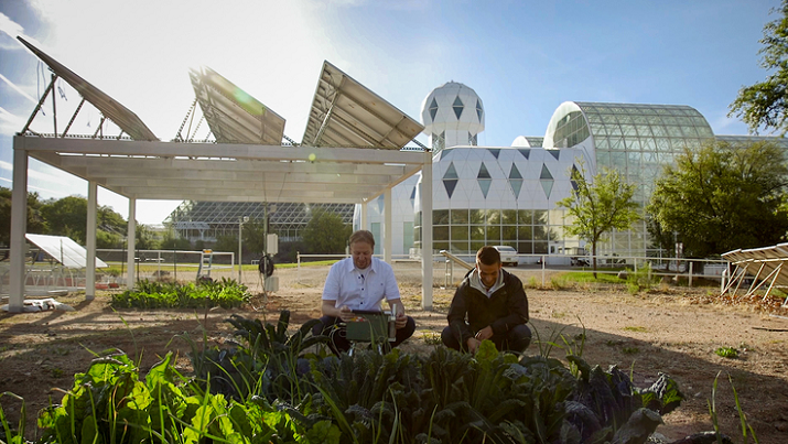 Researcher Greg Barron-Gafford and undergraduate research assistant Dan Blackett tend to the greens at the agrivoltaic test site at Biosphere 2. Image credit: Bob Demers/UANews