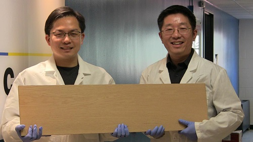Researchers show the super wood that's as strong as steel. Source: University of Maryland