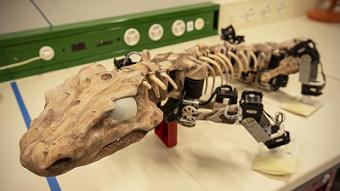 Watch a robot walk like a 300 million year old animal